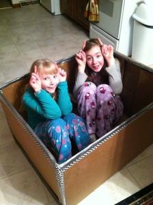 Kids in the goat box