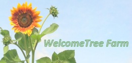 WelcomeTree Farm
